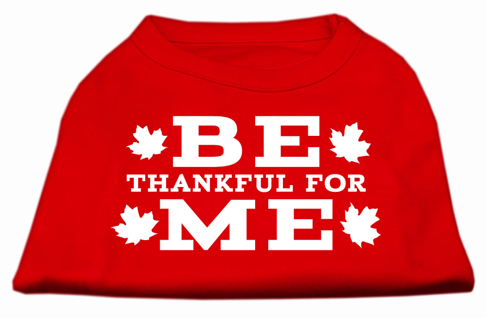 Be Thankful for Me Screen Print Shirt Red XXL (18)