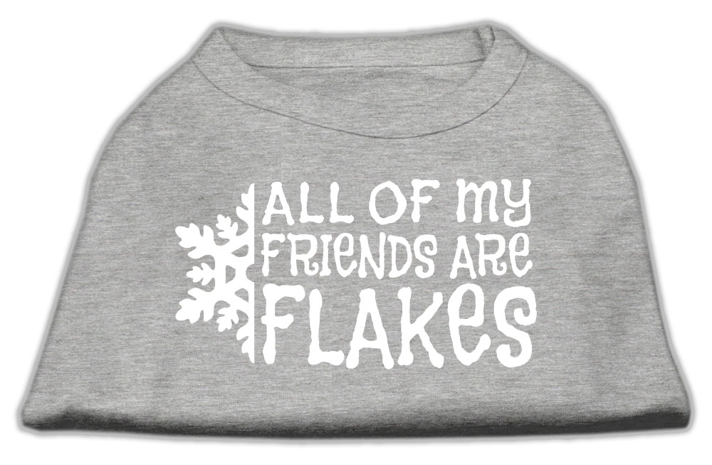 All my friends are Flakes Screen Print Shirt Grey M (12)