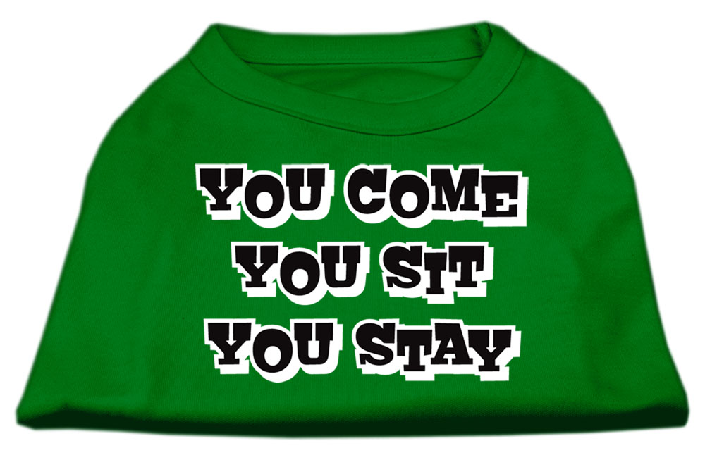 You Come, You Sit, You Stay Screen Print Shirts Emerald Green Med (12)