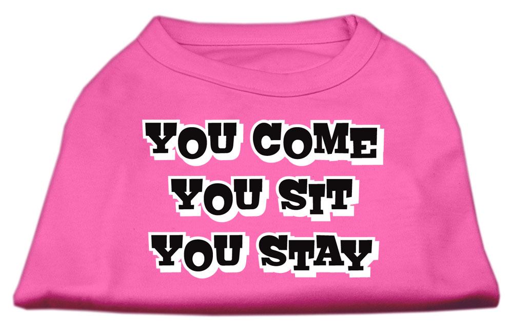 You Come, You Sit, You Stay Screen Print Shirts Bright Pink XL (16)