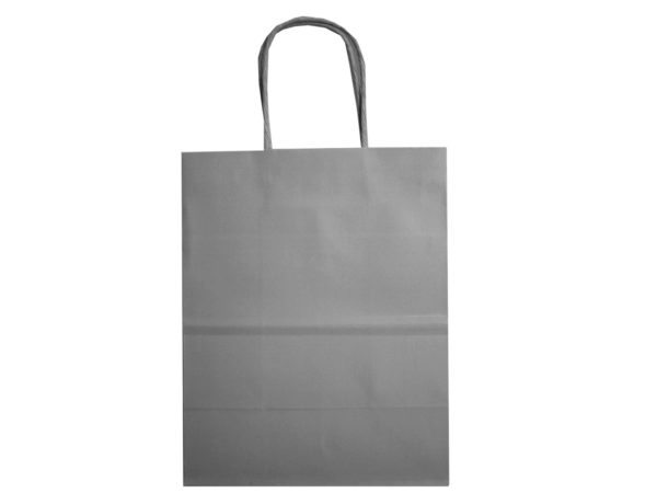 Case of 48 - Small Gray Gift Bag